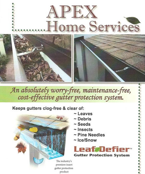 Apex Home Services Flyer